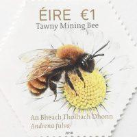 STAMP Tawny Mining Bee, Andrena fulva