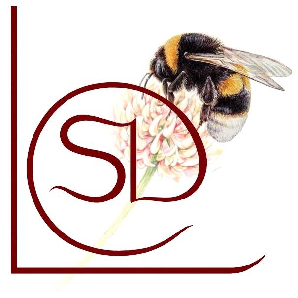 bumblebee and LSD logo