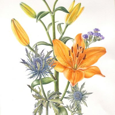 watercolour painting of orange lily and purple flowers by Shevaun Doherty