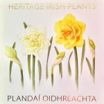 5. Heritage Irish Plants, Shevaun Doherty, artist