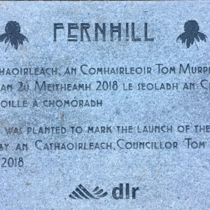 Fernhill commemoration stone with my image