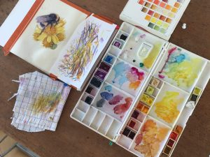 artist desk with watercolour paints and colour charts, and a bumblebee painting