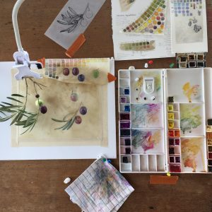 artist desk with palette and colour charts